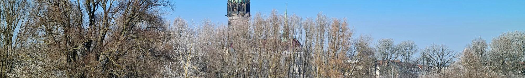 Wittenberger Schlosskirche im Winter